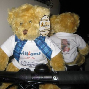 The Williams Syndrome Teddy Bears  preparing for their journey